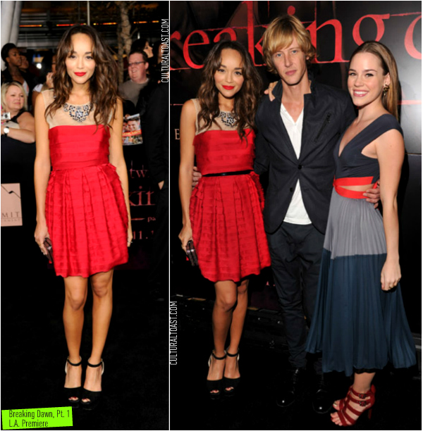 http://culturaltoast.files.wordpress.com/2011/11/ashley_madekwe_breaking_dawn_la_premiere.jpg